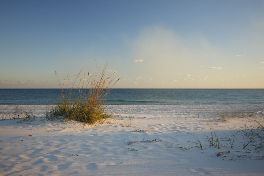 Gulf Shores Beach_20